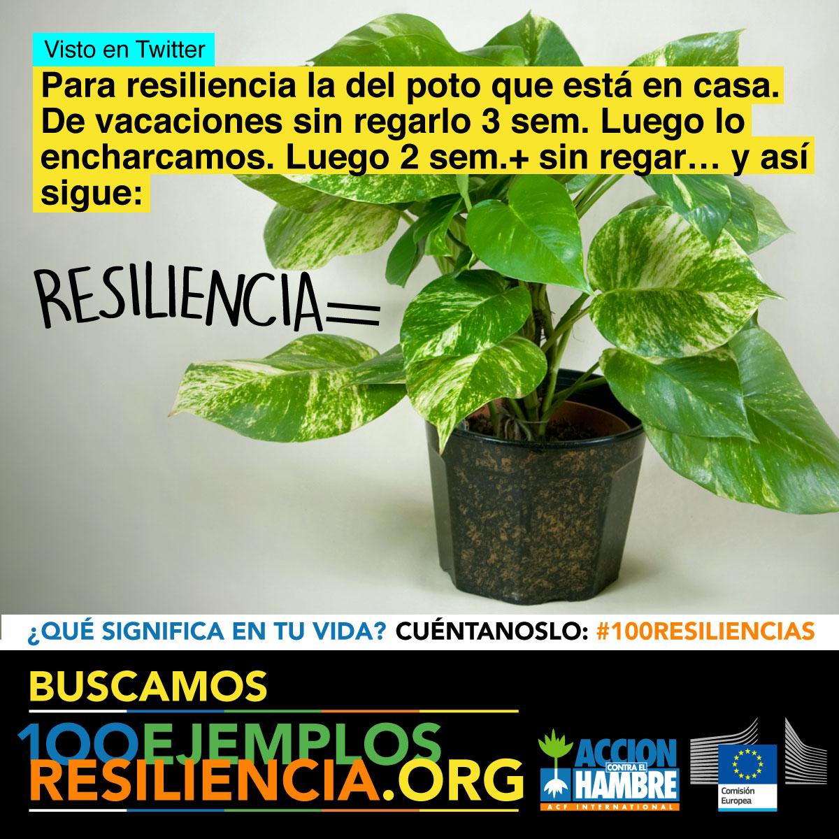 Gráfica 5 para redes sociales de la campaña 100 ejemplos de resiliencia de Acción Contra el Hambre